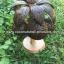 Coconut Shell Lamp (โคมไฟต้นมะพร้าว โคม 3 ลูก) thumbnail 4