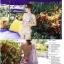 พร้อมส่ง ชุดว่ายน้ำบิกินี่ เซ็ต 3 ชิ้น ลายดอกกุหลาบสวย พร้อมผ้าคลุมสะโพกเนื้อซีทรู thumbnail 5