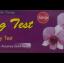 Mag Test Strip ที่ตรวจตั้งครรภ์ชนิดจุ่ม thumbnail 1