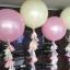 """ลูกโป่งกลมจัมโบ้ไซส์ใหญ่ 30""""Latex Balloon RB Pearl Pink สีชมพูมุก / Item No. TQ-39761 แบรนด์ Qualatex thumbnail 6"""