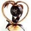 Coconut Shell Lamp (Heart and Flower) (โคมไฟกะลามะพร้าวรูปหัวใจ) thumbnail 1