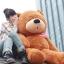 ตุ๊กตาหมีหลับ ตุ๊กตาตัวใหญ่ ขนาด 1.6 เมตร สีน้ำตาลเข้ม thumbnail 1
