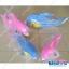 ตุ๊กตา ปลาโลมา ผ้าทีเอฟ ใหญ่-ยาว 30นิ้ว thumbnail 1
