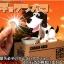 กระปุกออมสินสุนัขจอมตะกละ thumbnail 2