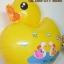 ลูกโป่งฟลอย์ เป็ดสีเหลือง - Duck Foil Balloon / Item No. TL-B018 thumbnail 4