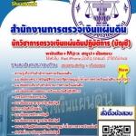 นักวิชาการตรวจเงินแผ่นดินปฏิบัติการ(บัญชี) (PDF)
