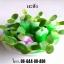 ต้นกล้ามะสัง thumbnail 1
