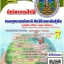 นักวิชาการป่าไม้ (PDF) thumbnail 1