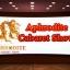 แอฟโฟร์ไดท์ คาบาเร่ต์โชว์ ภูเก็ต Aphrodite Cabaret Show Phuket thumbnail 1