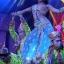 Playhouse Magical Cabaret @ Suan Lum Night Bazaar Ratchadaphisek thumbnail 4