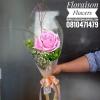 กุหลาบชมพู ดอกเดี่ยว (Single rose)