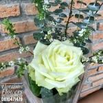 กุหลาบขาวดอกเดี่ยว by Floraison