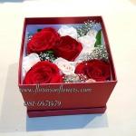 Red Roses Box (M)