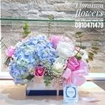 Floraison box white & blue (M)
