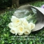 Premium Tulip Bouquet (M) thumbnail 2