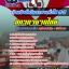 แนวข้อสอบเจ้าหน้าที่บริหารงานทั่วไป 3-5 สภากาชาดไทย NEW thumbnail 1
