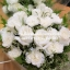 ช่อดอกไม้ The White Roses (M) thumbnail 3