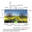 DRONE โดรนติดกล้อง pantonma สีฟ้า/สีทอง โดรนที่ได้ รางวัลการออกแบบ เรดดอทปี 2560 รีโมทสุดเท่ เสียบมือถือได้ไว้ดูภาพ realtime thumbnail 7