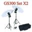 GS300 Set 300W X2 Flash Godox Studio Kit ชุดแฟลชสตูดิโอ300วัตต์ thumbnail 1
