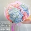 ช่อดอกไม้ Hydrangea pastel (M) thumbnail 1