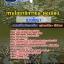 แนวข้อสอบช่างโยธา กรมโยธาธิการและผังเมือง NEW thumbnail 1