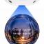 P2P VR 360 Degree Camera IP Camera thumbnail 2
