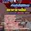 แนวข้อสอบเจ้าหน้าที่ปฏิบัติงาน สภากาชาดไทย NEW thumbnail 1