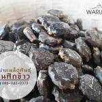 เมล็ดฝักข้าว ของสวน Warunee