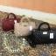 MANGO ( Quilted Bowling Handbag ) thumbnail 1